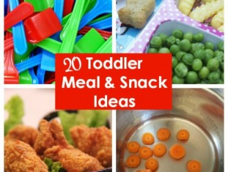 20 Toddler Meal & Snack Ideas!