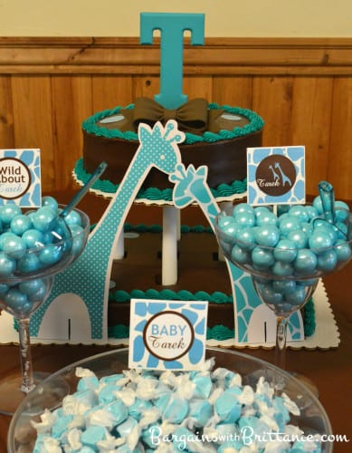 Blue And Brown Baby Shower Decorating Ideas Elitflat