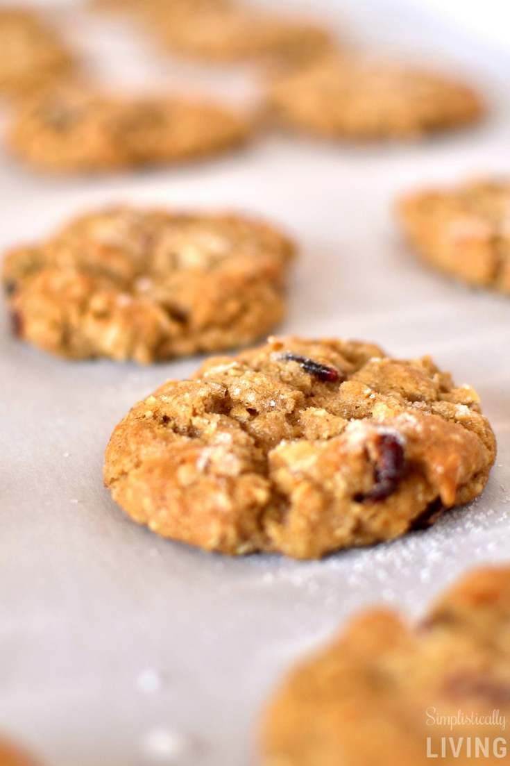 Oatmeal Craisin Cookies (No Eggs Needed)