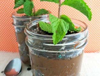 Mint Chocolate Plant Parfait
