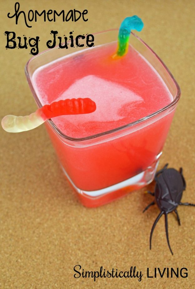 HOMEMADE BUG JUICE