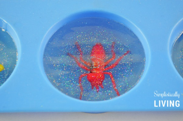 bug soap inprocess4