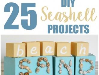 25 DIY Seashell Projects