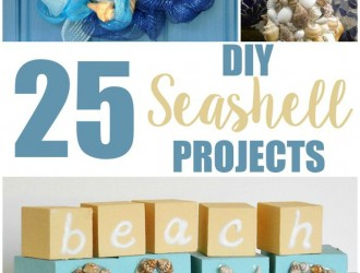 25 DIY Seashell Projects