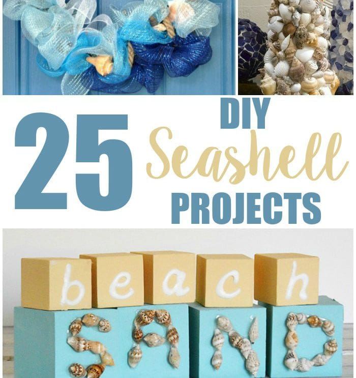 25-DIY-Seashell-Projects featured