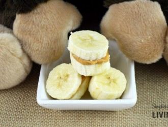 Simple Peanut Butter and Banana Bites (Monkey Treat)