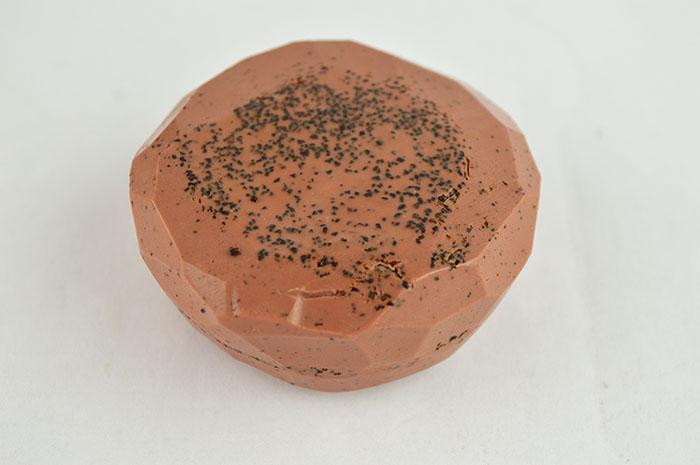 dinosaur fossil soap inprocess6