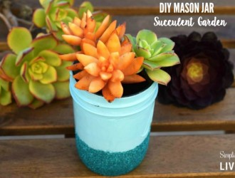 DIY Mason Jar Succulent Garden