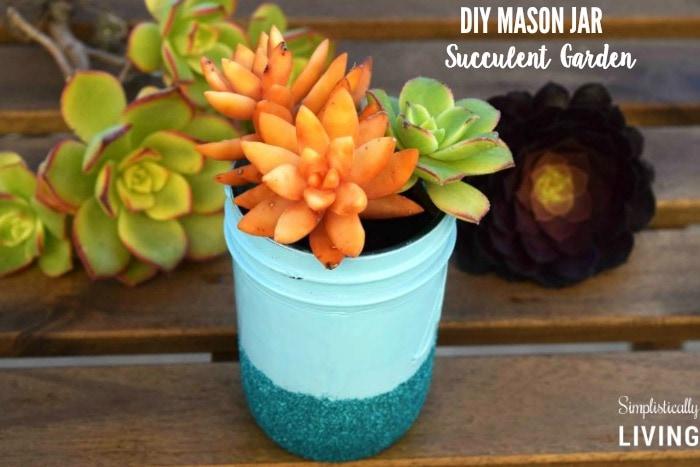 mason jar succulent garden featured