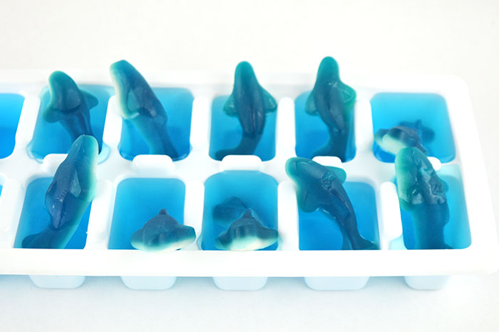 shark ice cubes inprocess4