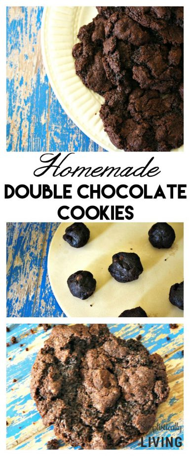 Homemade Double Chocolate Cookies Pinterest
