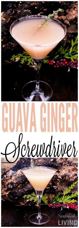 guava ginger screwdriver