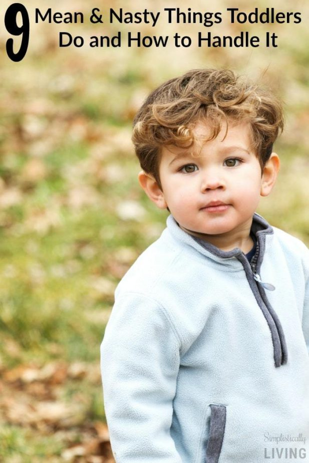 9 Mean & Nasty Things Toddlers Do and How to Handle It