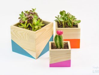 DIY Color Block Wood Planter