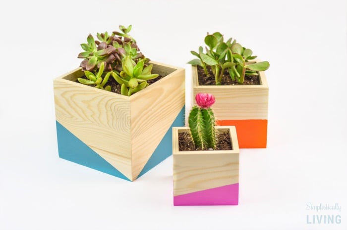 DIY Color Block Wood Planter Featured