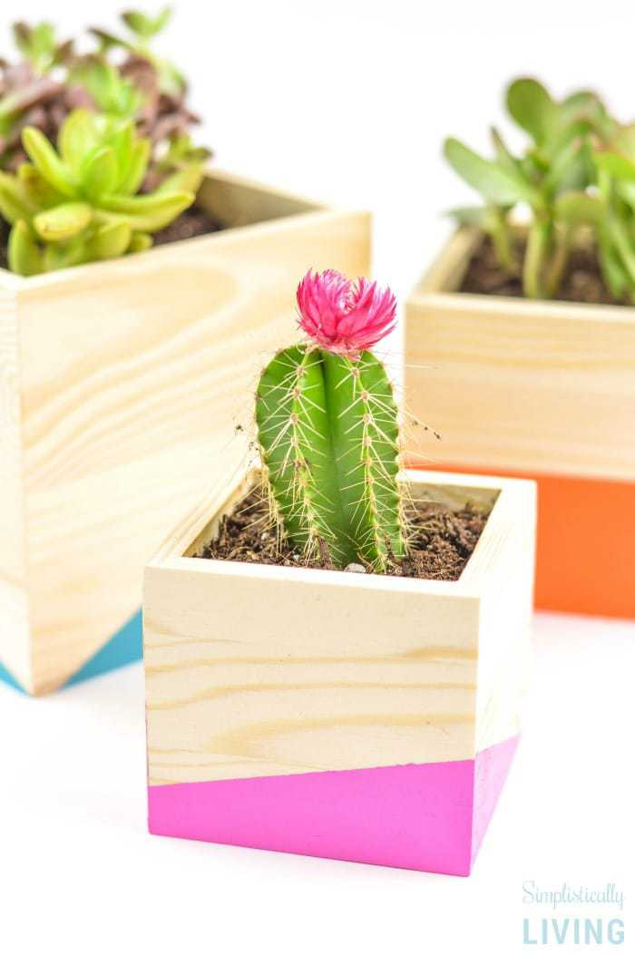 DIY Color Block Wood Planter2