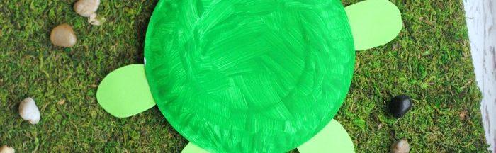 DIY Turtle Paper Plate