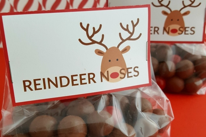 image relating to Reindeer Noses Printable called Reindeer Noses Handle Luggage (With Absolutely free Printable)