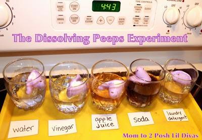 Do The Dissolving Peeps Experiment
