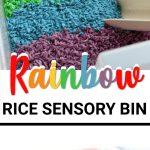 rainbow sensory bin for play