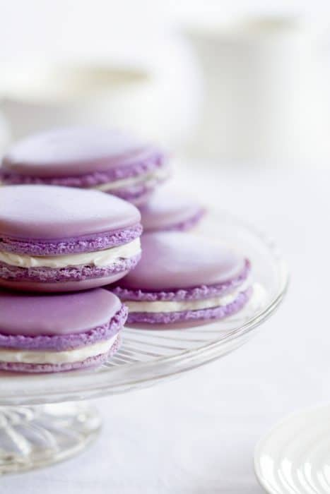 lavender macarons on glass plate