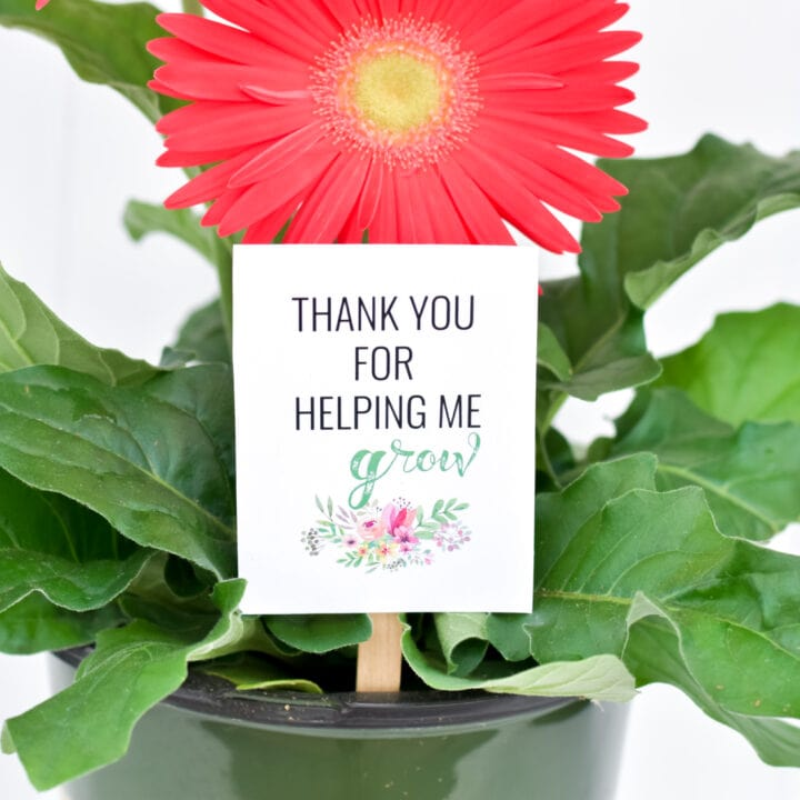 'THANK YOU FOR HELPING ME GROW' TEACHER APPRECIATION GIFT