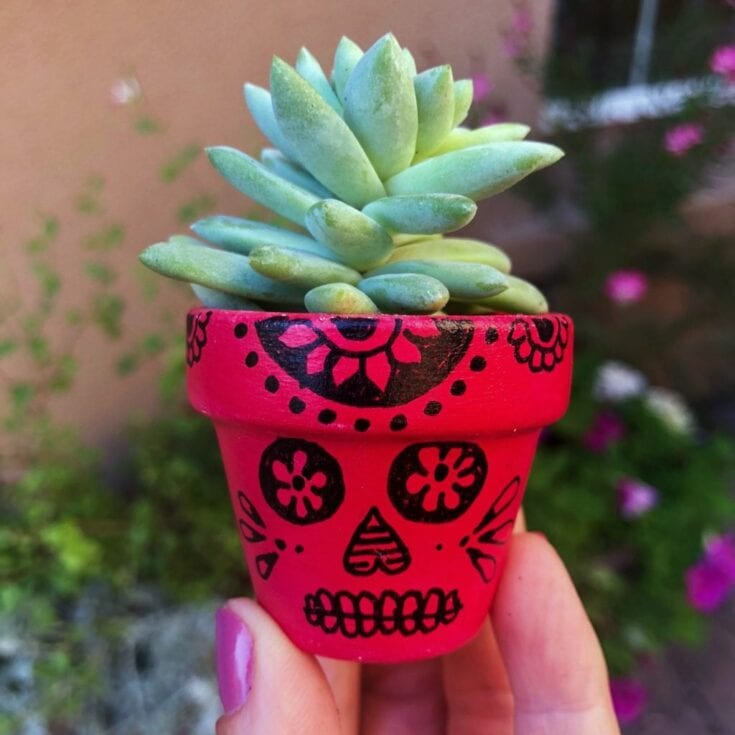 Sugar Skull Painted Flower Pots