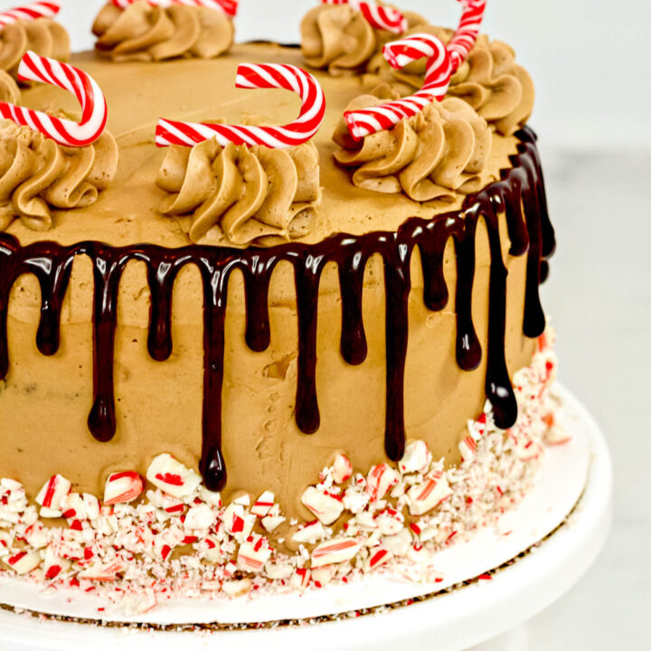 Chocolate Candy Cane Cake